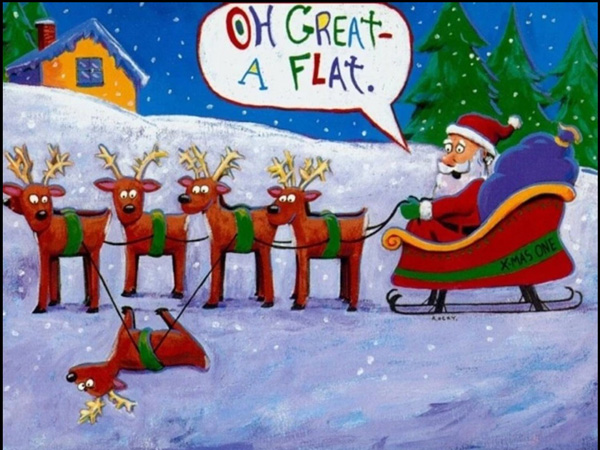 funny christmas wishes picture   365greetings