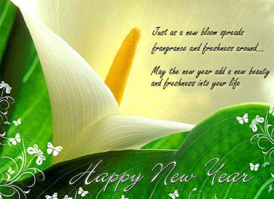 New Year Messages for Boss - Messages, Greetings and Wishes