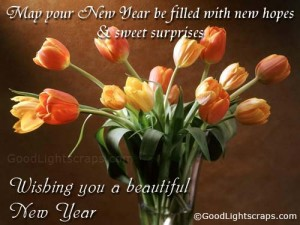 Wish all your friends a happy, joyous New Year! Photo Credit: http://www.goodlightscraps.com