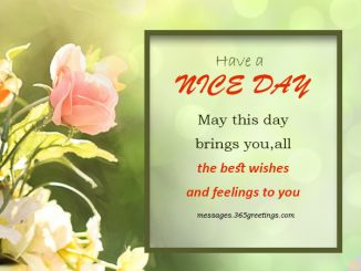 Good Morning Messages Archives 365greetingscom