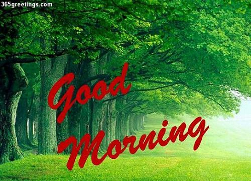 Good Morning Have A Nice Day Free Good Morning Ecards 123