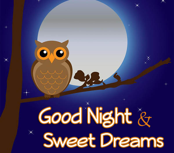 Romantic good night messages 365greetings good night greetings m4hsunfo Image collections