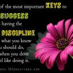 motivational-words-about-success
