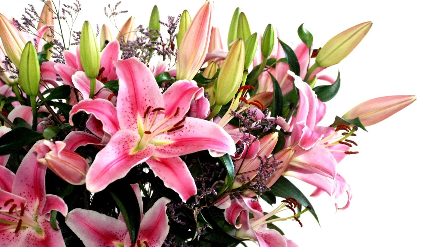 Bunch Of Flowers For Birthday Comousar