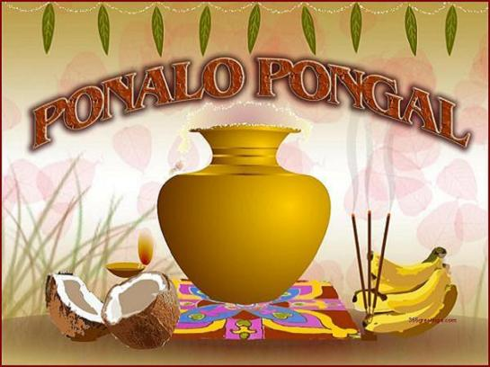 pongal-greetings