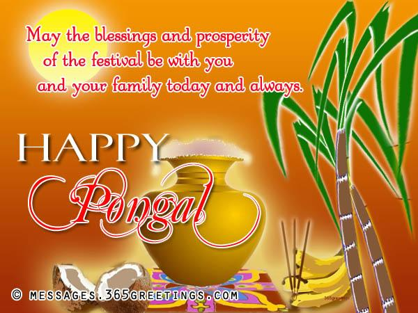 Image result for pongal greetings images