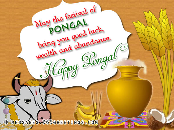 Best Happy Pongal SMS HD Images for free download