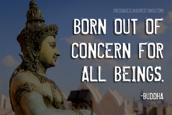 Buddha quotes 365greetings born out of concern for all beings m4hsunfo