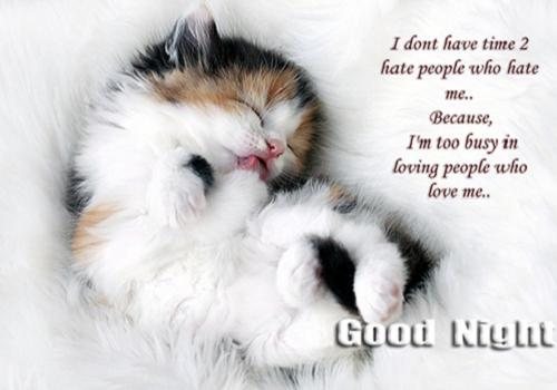 Cute Good Night Quotes 365greetingscom