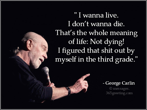 george carlin quotes 365greetingscom