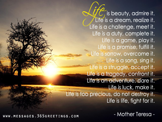 Life Quotes Mother Teresa Interesting Mother Teresa Quotes  365Greetings