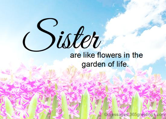 Sister quotes morning 150+ Beautiful