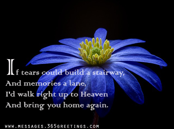 Sympathy Quotes For Loss Of Father Gorgeous Sympathy Quotes 48greetings