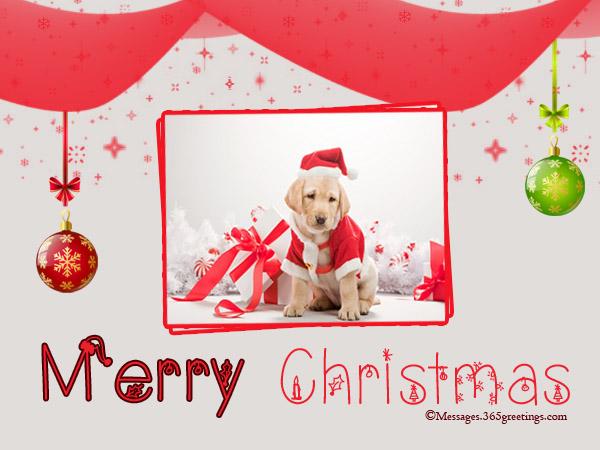 cute-dog-christmas-cards