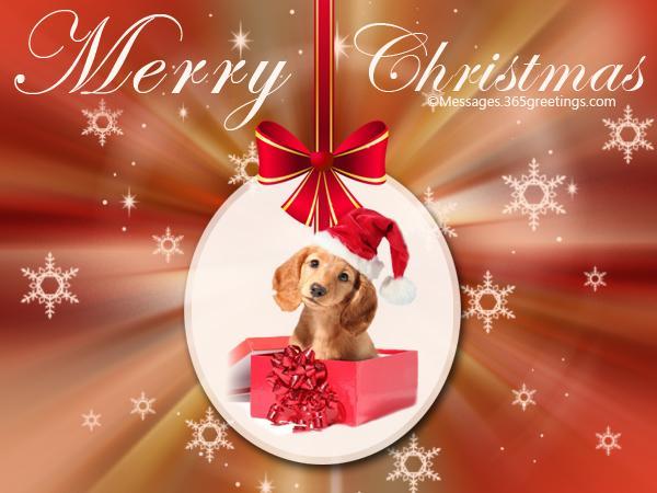dog-christmas-cards