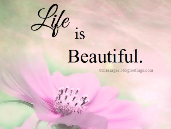 Life is Beautiful Quotes and Sayings - 365greetings.com